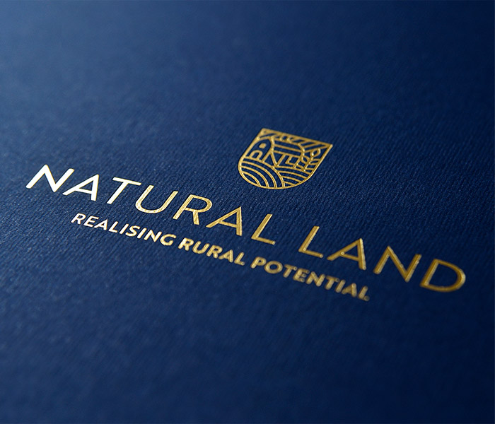 Branding and graphic design by Eclectic Creative design agency